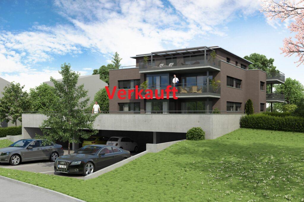 1610 Aussenvisualisierung VERKAUFT - Archicube AG