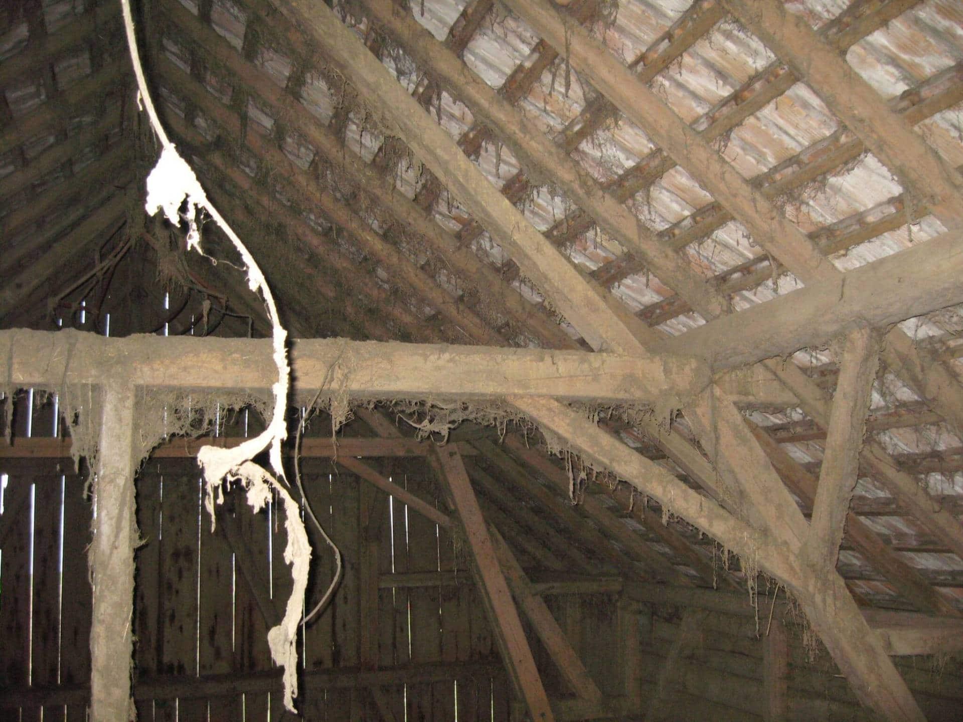 Umbau Bauernhaus 5724 Dürrenäsch